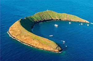 Molokini island snorkel tour.