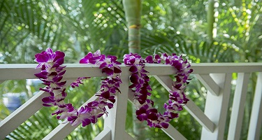 Fresh Flower Leis offered by Coconut Condos Vacation Rentals